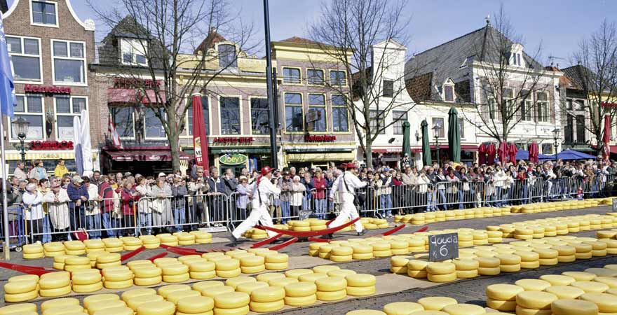 Käsemarkt in Alkmaar in den Niederlanden