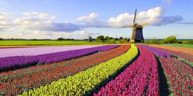 Diese Sehenswürdigkeiten in den Niederlanden dürft ihr euch nicht entgehen lassen!