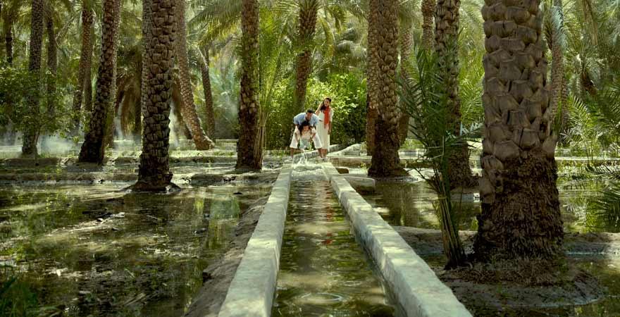 Al Ain Oase in Abu Dhabi