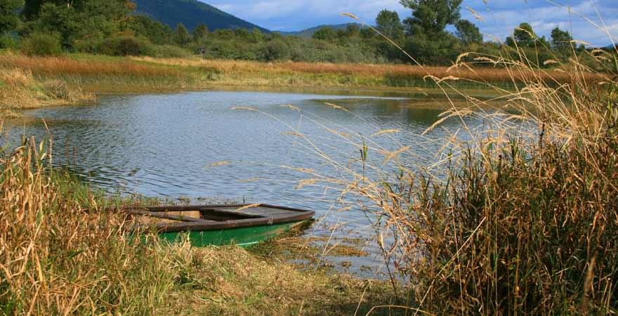 Cerkniško jezero in Slowenien
