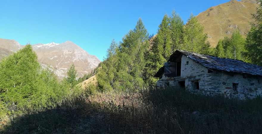 Wanderung zur Seespitze in Südtirol