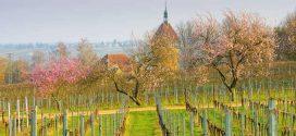 Farbenpracht und Lebenslust – Tipps für euren Frühlingsurlaub in Deutschland
