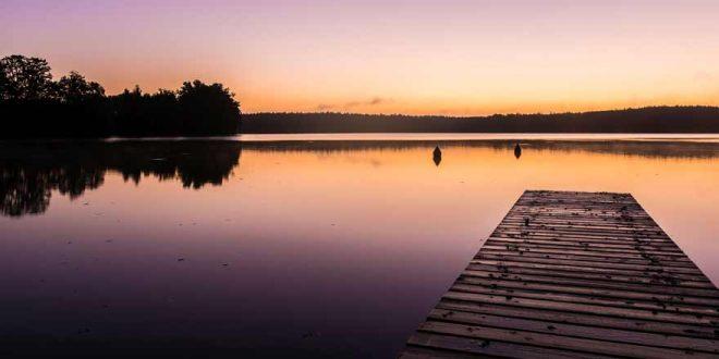 Natur pur: Unsere Reisetipps für den Müritz Nationalpark