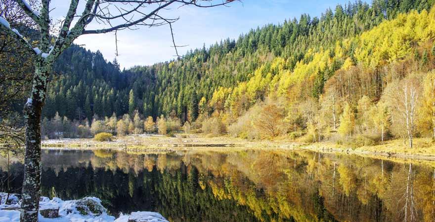See im Winter im Schwarzwald
