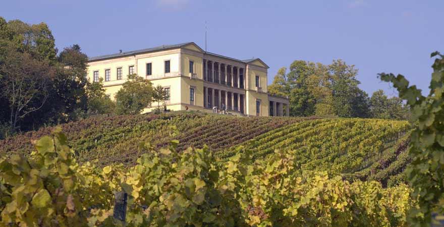Villa Ludwigshöhe mit Weinstöcken an der Südlichen Weinstraße in der Pfalz