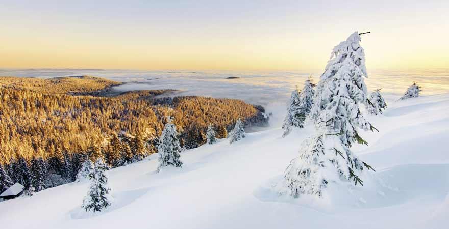 Winter und Schnee im Schwarzwald