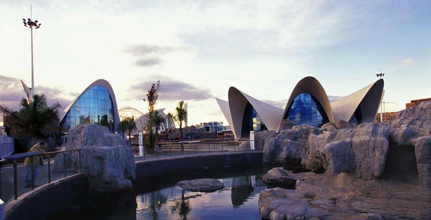 The Oceanographic in der Ciutat de les Arts et Ciencies in Valencia