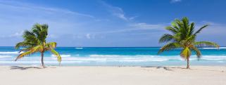 Barbuda Destination