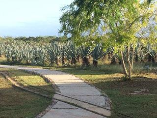 Yucatan Haciendas