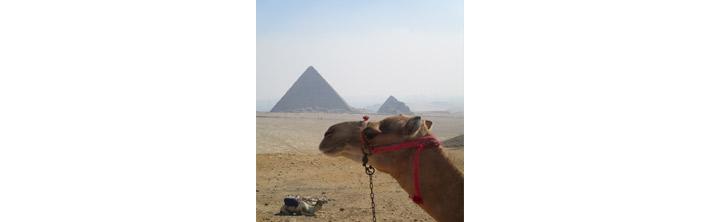 Ägypten - das Land der Pharaonen
