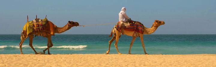Ägypten Urlaub mit Bestpreisgarantie