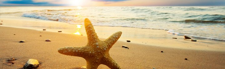 Top Urlaubsziele im Juli & August