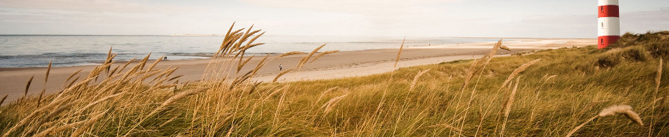 Strand Hiddensee