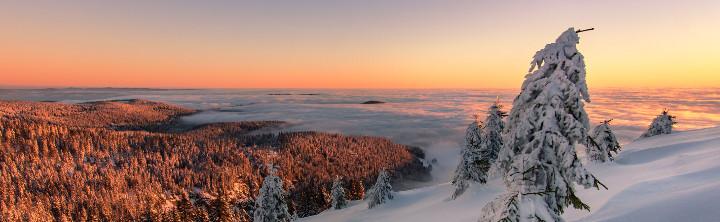 Kurzurlaub im Schwarzwald
