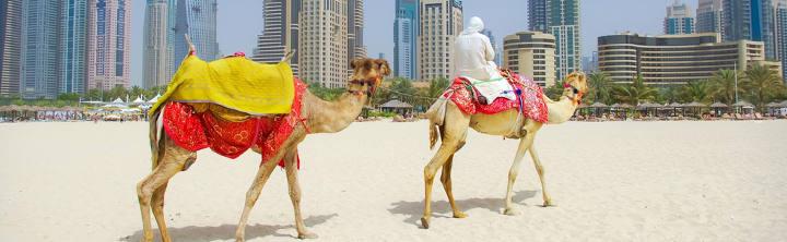 Dubai Urlaub mit Tiefpreisgarantie