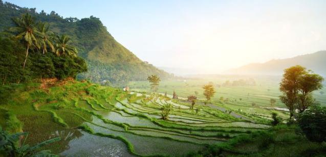 Die beste Reisezeit für Indonesien erfahren Sie hier bei 5vorflug.de!