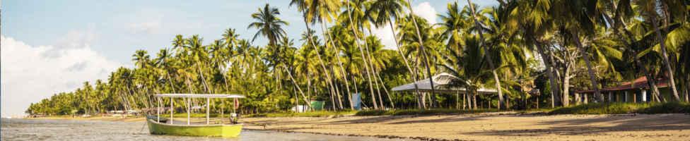 Die beste Reisezeit für Brasilien erfahren Sie hier bei 5vorflug.de!