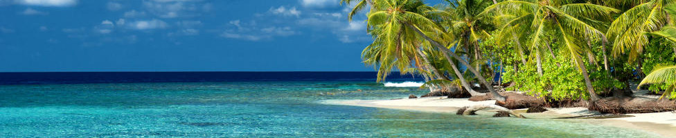 Bonaire Urlaub