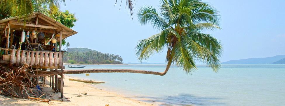 Fernreise Jamaica