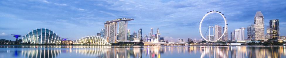 Flüge Singapur
