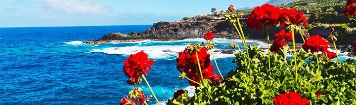 Hotelempfehlungen mit dem FTI Corona Reiseversprechen
