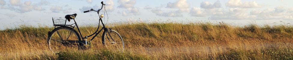 Landschaft von Niederlanden mit Hollandrad