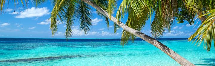 TOP 3 Ziele in der Karibik (inkl. Flug)