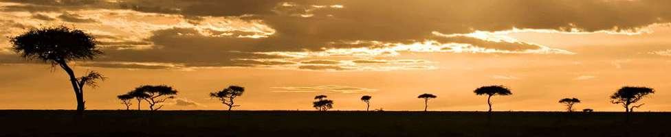 Die beliebtesten Hotel Angebote in Kenia