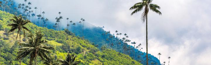 Kolumbien Reisen (inkl. Flug) für jeden Geldbeutel!