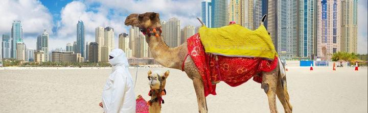 Last Minute Dubai günstig