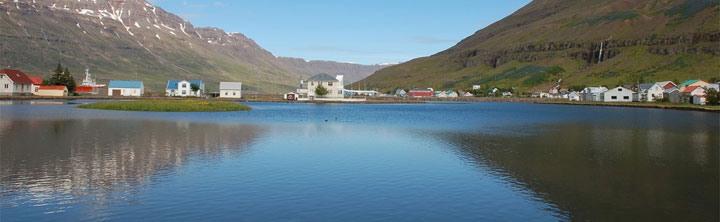 Last Minute Island zu Schnäppchenpreisen!