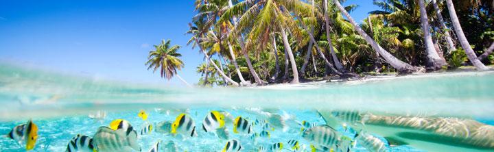 Frühbucher Malediven günstige Hotels