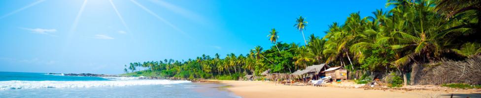 Pauschalreise Sri Lanka