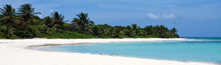 Erleben Sie das Lebensgefühl in der Karibik