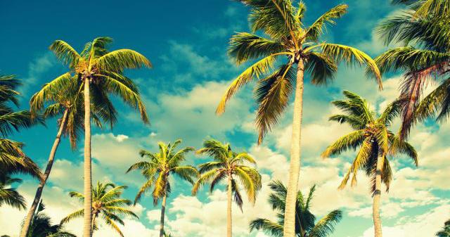 Reiseklima Karibik