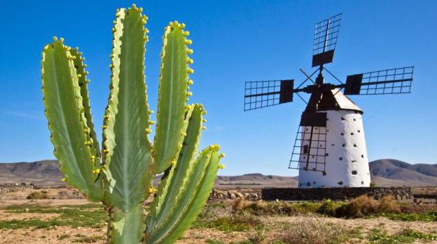 Die beste Reisezeit für Fuerteventura erfahren Sie hier bei 5vorflug.de!