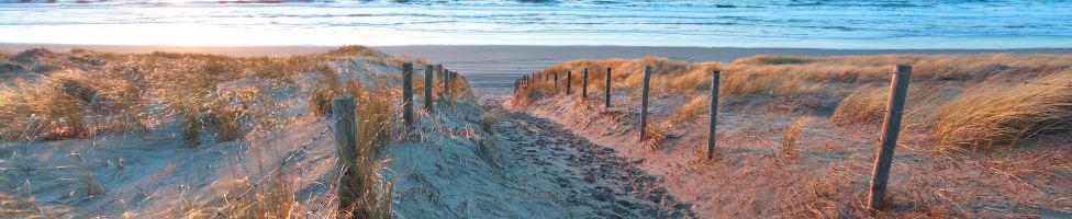 Landschaft von Zandvoort mit Hollandrad